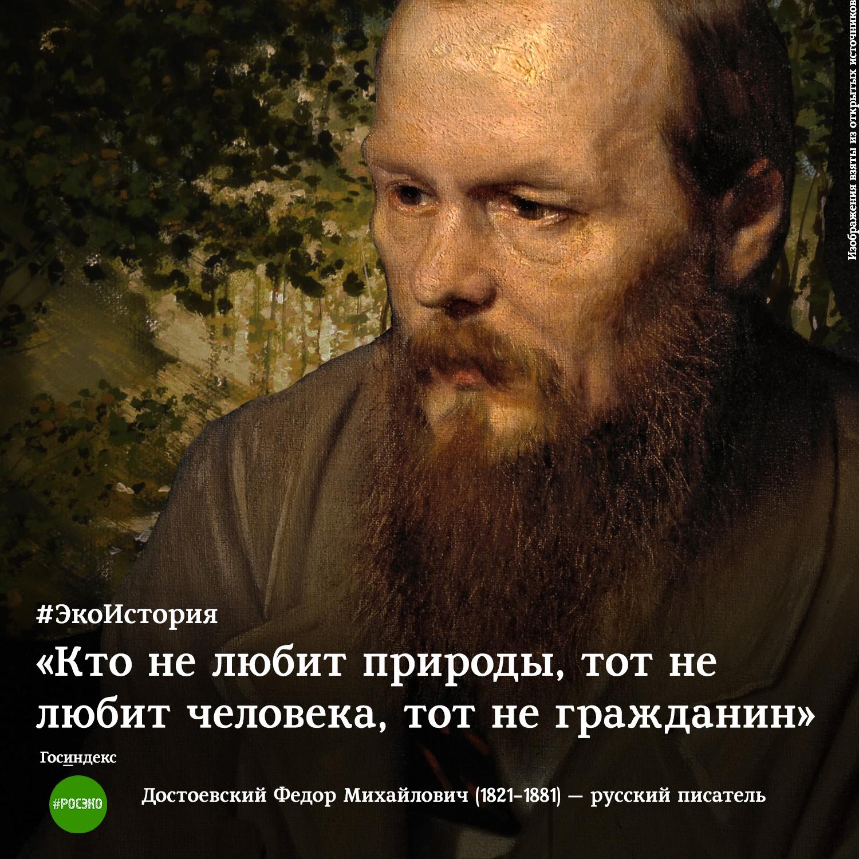 экоистория достоевский